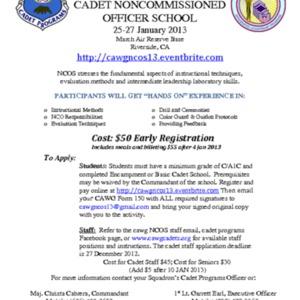 NCOS-2013 Flyer.pdf